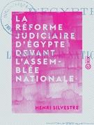 La Réforme judiciaire d'Égypte devant l'Assemblée nationale