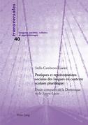 Pratiques et représentations sociales des langues en contexte scolaire plurilingue