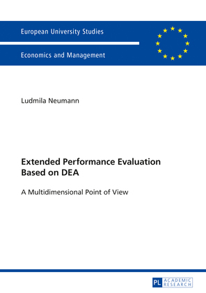 Extended Performance Evaluation Based on DEA