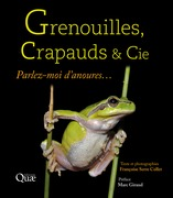 Grenouilles, crapauds et Cie