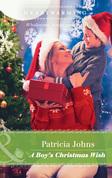 A Boy's Christmas Wish (Mills & Boon Heartwarming)