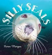 Silly Seals