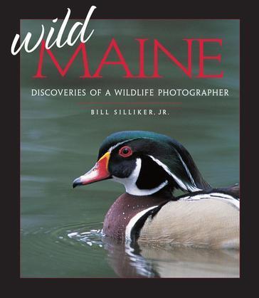Wild Maine