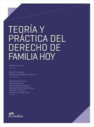 Teoría y práctica del derecho de familia hoy
