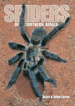 Spiders of Southern Africa