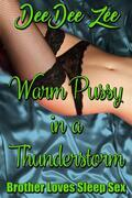 Warm Pussy in a Thunderstorm: Brother Loves Sleep Sex, Book 12