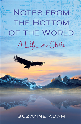 Notes from the Bottom of the World