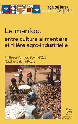 Le manioc, entre culture alimentaire et filière agro-industrielle