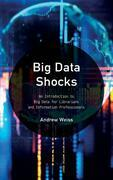 Big Data Shocks