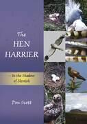 The Hen Harrier
