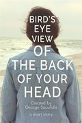 Bird's-Eye View of the Back of Your Head