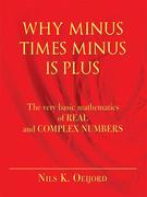 Why Minus Times Minus Is Plus