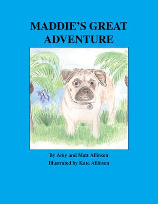 Maddie's Great Adventure