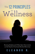 The 12 Principles to Wellness