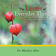 The Luster of Everyday Things