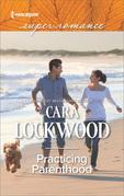 Practicing Parenthood (Mills & Boon Superromance)