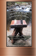 Match of Minds: Electronic Affair