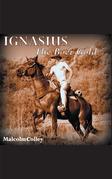 Ignasius: the Boer Gold