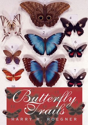 Butterfly Trails