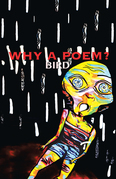 Why a Poem?