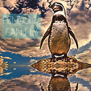 Penguins Can Fly