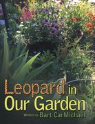 Leopard in Our Garden