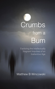 Crumbs from a Bum