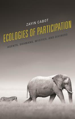 Ecologies of Participation