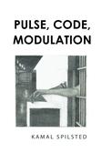 Pulse, Code, Modulation