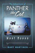 The Adventures of Panther the Cat