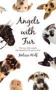 Angels with Fur