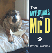 The Adventures of Mr. D