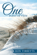 One Point of View