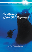The Mystery of the Old Shipwreck