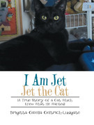 I Am Jet Jet the Cat
