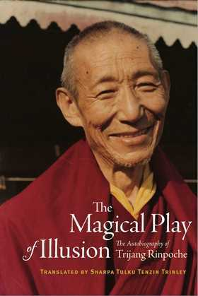 The Magical Play of Illusion