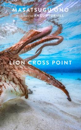 Lion Cross Point
