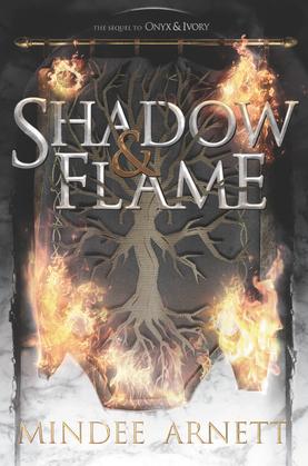 Image de couverture (Shadow & Flame)