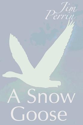 A Snow Goose