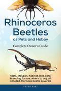 Rhinoceros Beetles as Pets and Hobby