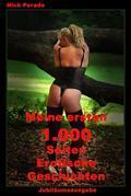 Meine ersten 1.000 Seiten erotische Geschichten