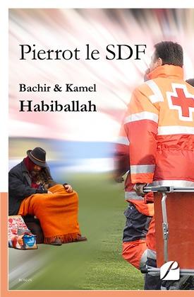 Pierrot le SDF