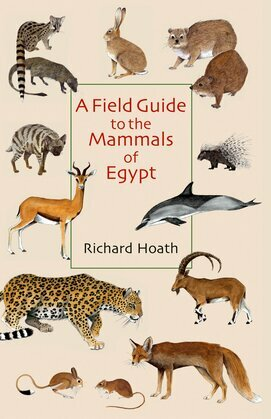 A Field Guide to the Mammals of Egypt