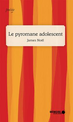 Le pyromane adolescent