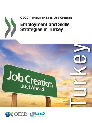 Employment and Skills Strategies in Turkey