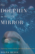 The Dolphin in the Mirror