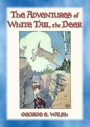 THE ADVENTURES OF WHITE TAIL THE DEER - with Bumper the Rabbit and Friends