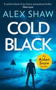 Cold Black (An Aidan Snow SAS Thriller, Book 2)