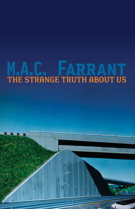 The Strange Truth About Us: a novel of absence