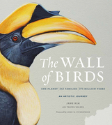 The Wall of Birds